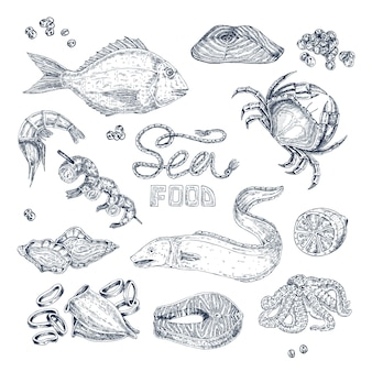 Seafood monochrome sketches set