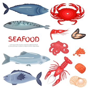 Seafood and seafood delicacies background set