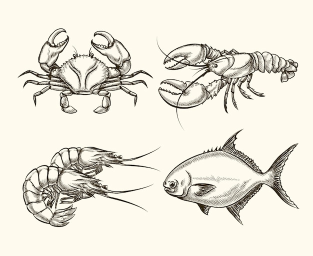 Seafood set in hand drawn style