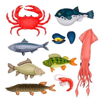 Seafood set with crab, fish, mussel and shrimp isolated on white background. marine creatures in flat style.