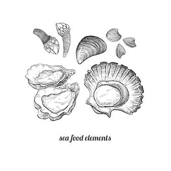 Морепродукты. моллюски, мидии, морские гребешки, устрицы, ракушки.