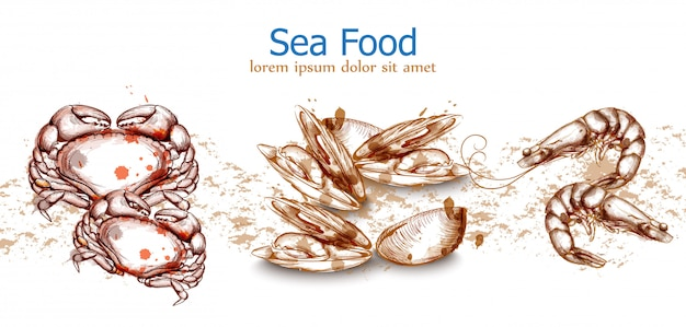 Seafood template crab seafood