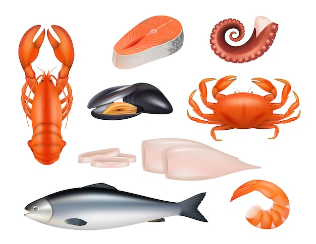 Морепродукты. мука из тунца рыбы креветки моллюски осьминог краб реалистичные натуральные продукты. рыба и краб, тунец из морепродуктов, свежие кальмары и мидии иллюстрации