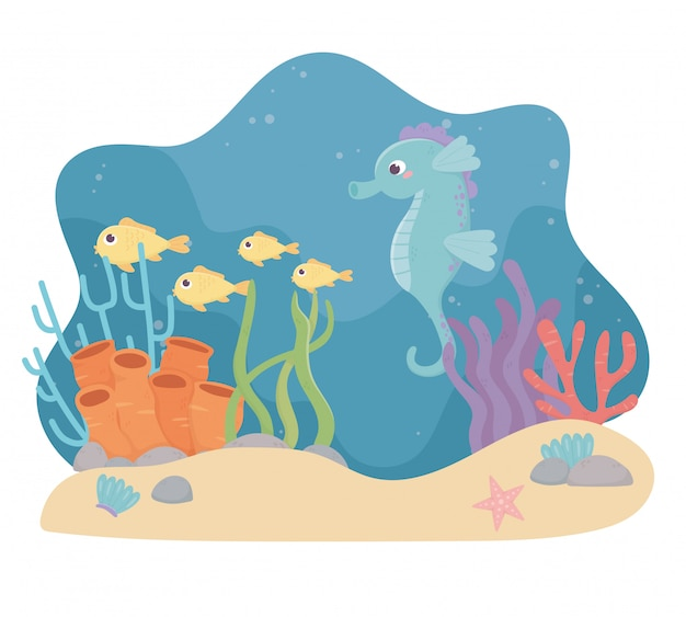 Seahorse fishes starfish sand life coral reef cartoon under the sea