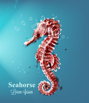 Seahorse watercolor with bubbles