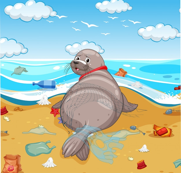 Seal covered with net and plastic bags on the beach