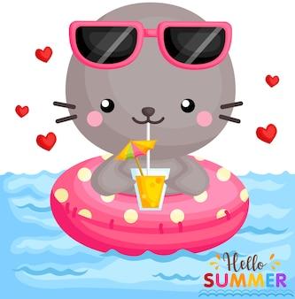 Seal drinking at pool