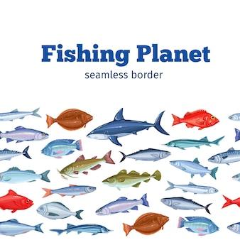 Seamleess 국경 물고기. 도미, 고등어, 참치 또는 sterlet, 대구 및 넙치와 해산물 배경.