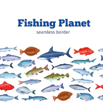 Seamleess border fish. seafood background with bream, mackerel, tunny or sterlet, codfish and halibut.