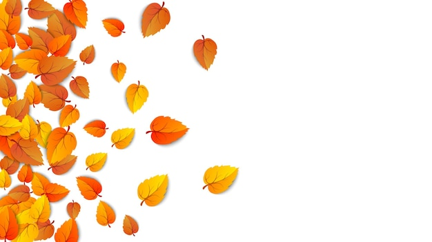 Seamless autumn leaves horizontal banner isolated on white background