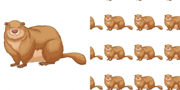 Seamless background design with fat beaver