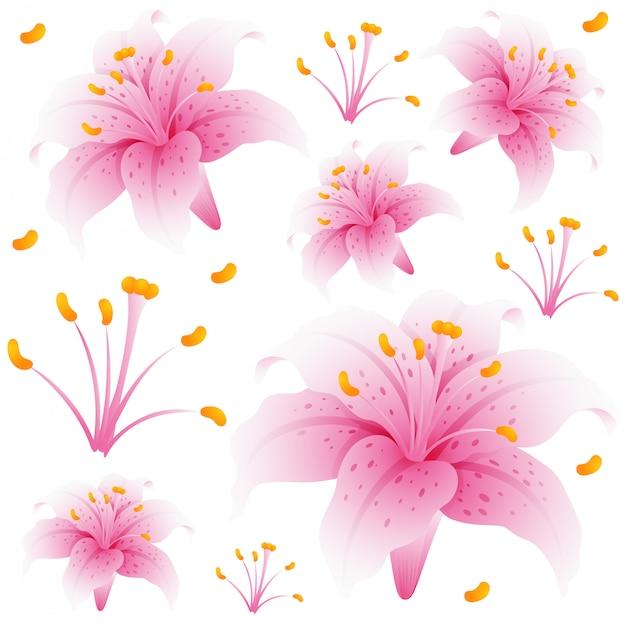 ピンクのユリの花とシームレスな背景のデザイン