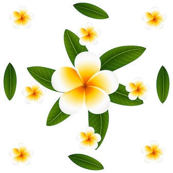 Seamless background design with plumeria and leaves