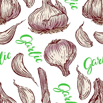 Seamless background of garlic on a white background. hand-drawn illustration