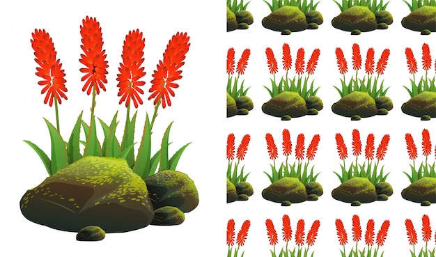 Seamless background  with aloe vera and moss stones