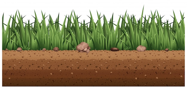 Seamless background with grass on the ground
