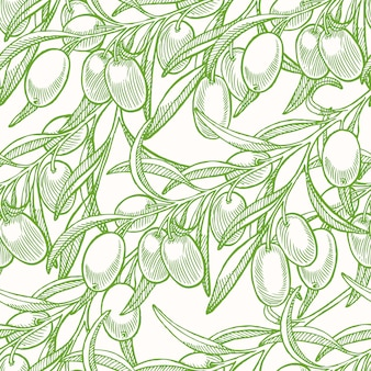 緑の手でシームレスな背景描画オリーブの木の小枝