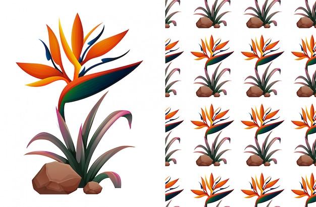 Seamless bird of paradise flower