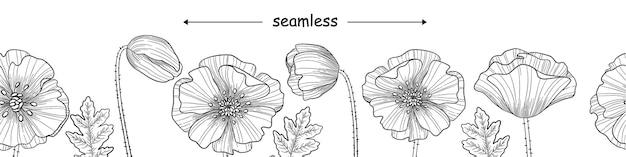 Seamless border banner with poppies