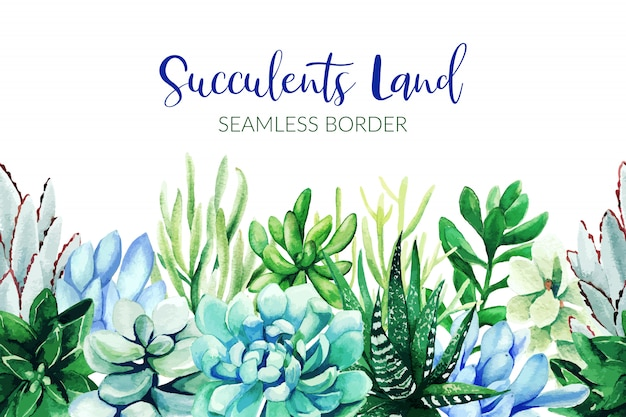 Seamless border composed of green and blue succulent plants