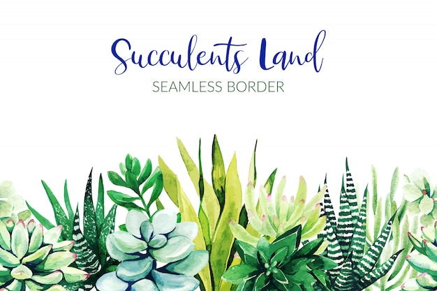Seamless border composed of succulent plants, hand drawn