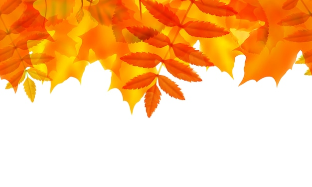 Seamless border with autumn leaves