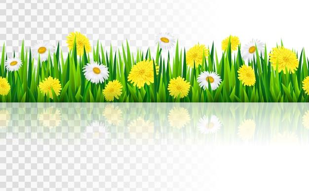 잔디와 꽃과 원활한 국경