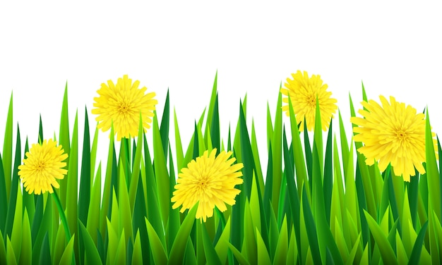 Seamless border with grass and flowers
