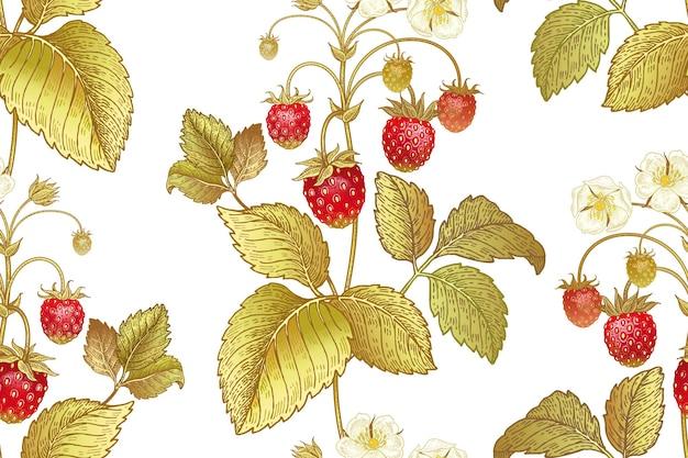 白い背景の上のイチゴの花とベリーとのシームレスな植物パターン