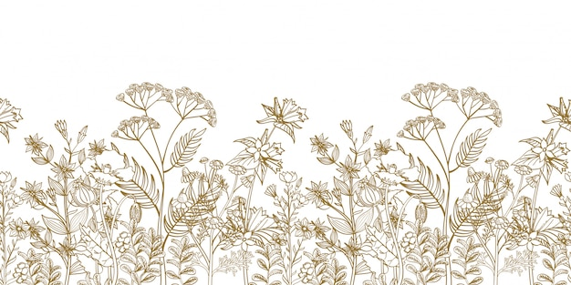 Seamless floral border with black white hand drawn herbs and wild flowers