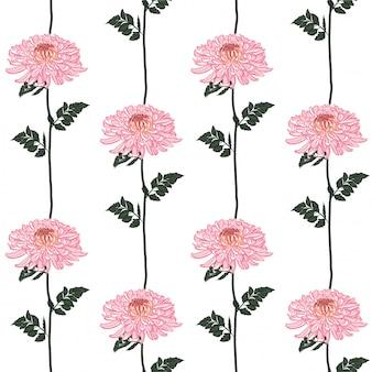 シームレスな花柄。咲くピンクの日本のピンクの菊の花。