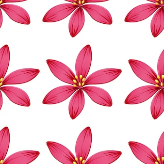 Seamless flowers isolated on white