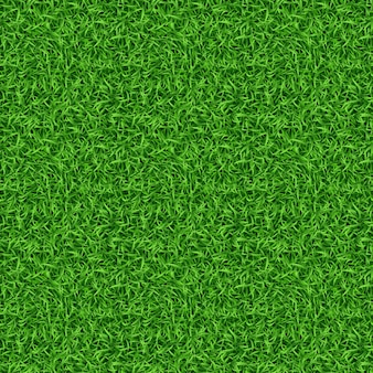 Seamless green grass pattern