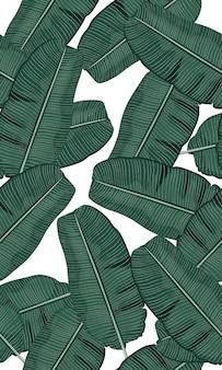 Seamless green tropical banana leaves
