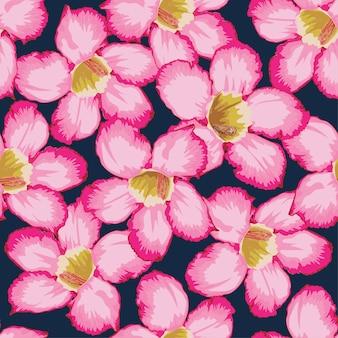 Seamless pattern adenium flowers