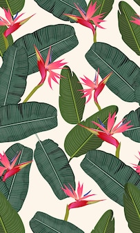 Seamless pattern banana leaf with pink bird of paradise