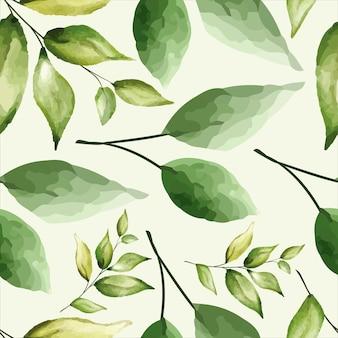 Seamless pattern beautiful greenery leaves design