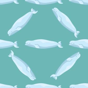 청록색 바탕에 원활한 패턴 벨루가입니다. 어린이를 위한 바다의 만화 캐릭터 템플릿입니다. 해양 고래류로 반복되는 대각선 텍스처입니다. 어떤 목적을 위한 디자인. 벡터 일러스트 레이 션.