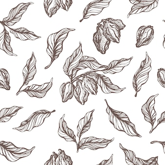 Seamless pattern of cocoa tree branch with leaf, bean doodle drawing set sketch illustration