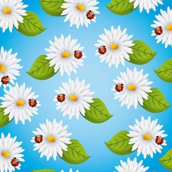 원활한 패턴 데이지 꽃
