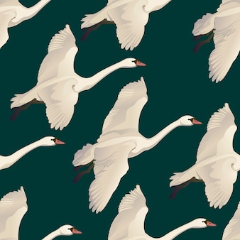 Seamless pattern of drawing flying swans. hand drawn, doodle graphic design with birds.