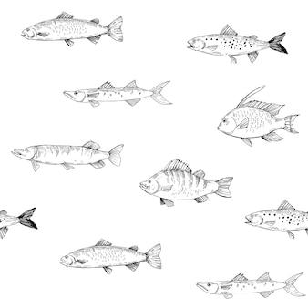 원활한 패턴 물고기입니다. 투명 배경으로 개요. 벡터 일러스트 레이 션