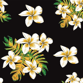 Seamless pattern floral with frangipani flowers and monstera leaf abstract background. illustration hand drawn.