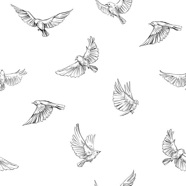 シームレスなパターン、飛んでいる鳥。ベクトルのアウトライン