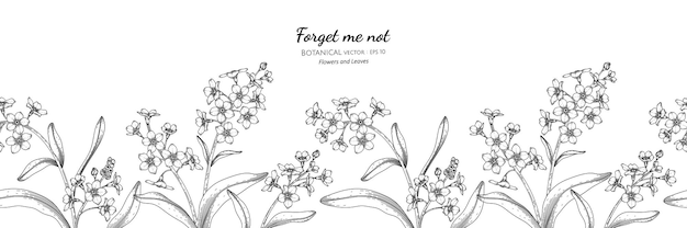 Seamless pattern forget me not flower and leaf hand drawn botanical illustration with line art.