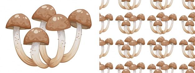 Seamless pattern of fungi on white