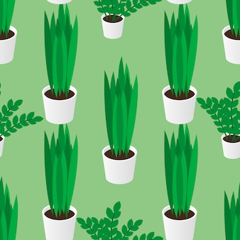 Seamless pattern of green homeplants in pots