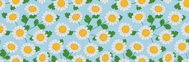 Seamless pattern of hand-drawn camomile flowers