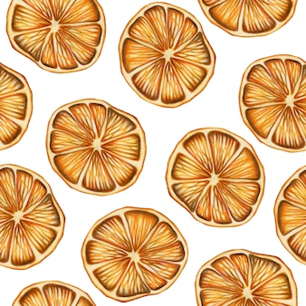 Seamless pattern of hand drawn dried oranges