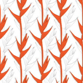 Seamless pattern heliconia flower abstract background.  line art.